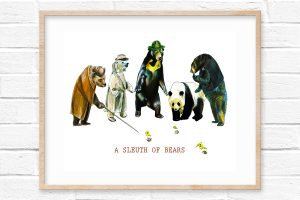 A Sleuth of Bears